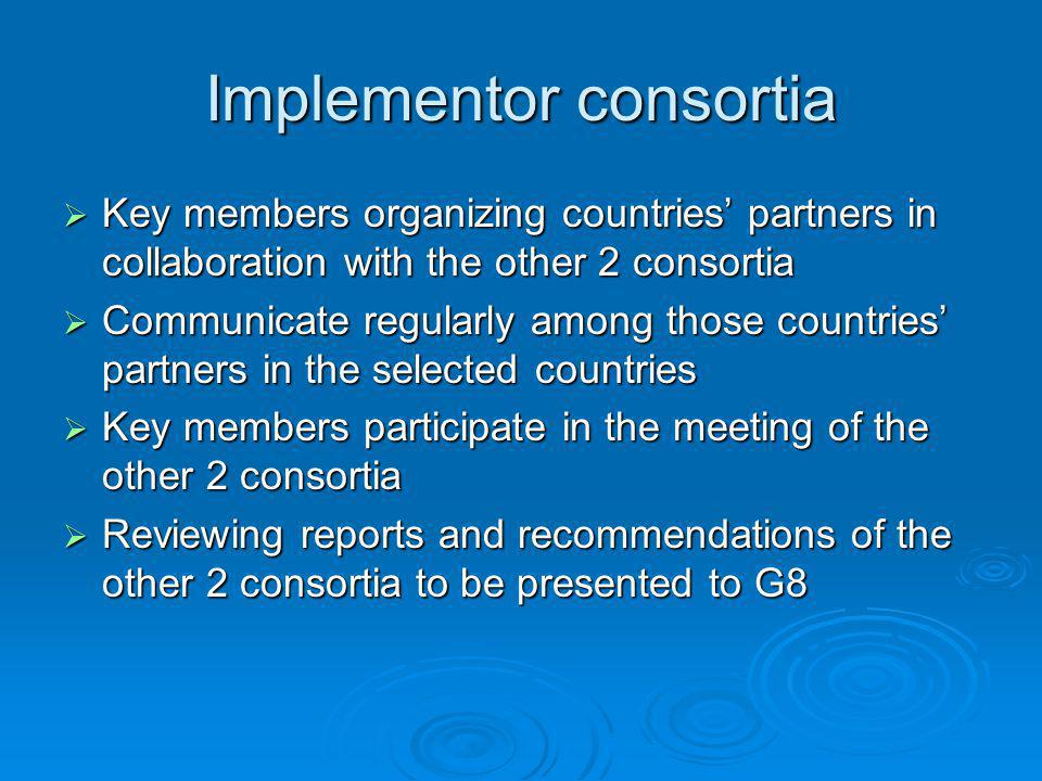 Implementor consortia  Key members organizing countries' partners in collaboration with the other 2 consortia  Communicate regularly among those countries' partners in the selected countries  Key members participate in the meeting of the other 2 consortia  Reviewing reports and recommendations of the other 2 consortia to be presented to G8