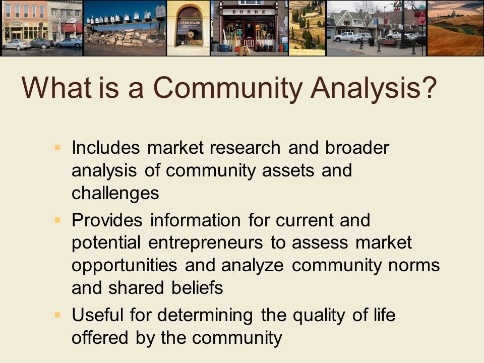 What is a Community Analysis.
