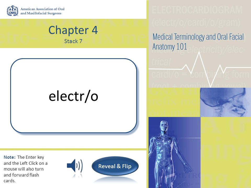 Chapter 4 Stack 7 Dry; Dryness xer/o Note: The Enter key and the Left Click on a mouse will also turn and forward flash cards.