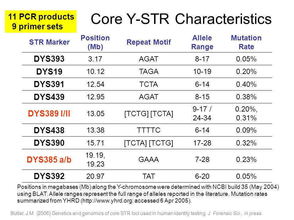 Core Y-STR Characteristics STR Marker Position (Mb) Repeat Motif Allele Range Mutation Rate DYS393 3.17AGAT8-170.05% DYS19 10.12TAGA10-190.20% DYS391