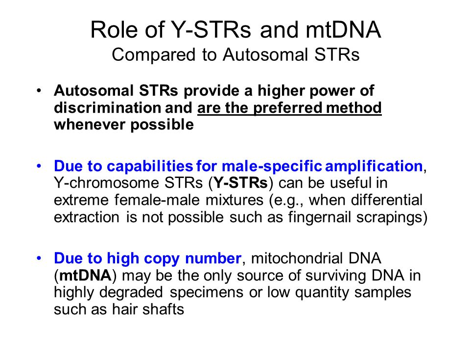 Conclusions from Peter de Knijff A haplotype frequency taken from any Y-STR database should not be reported or seen as a random match probability –Because all male relatives have the same haplotype –Males can share haplotypes without being related From his presentation at the Promega meeting (Oct 2004) Database estimates are at most qualitative…