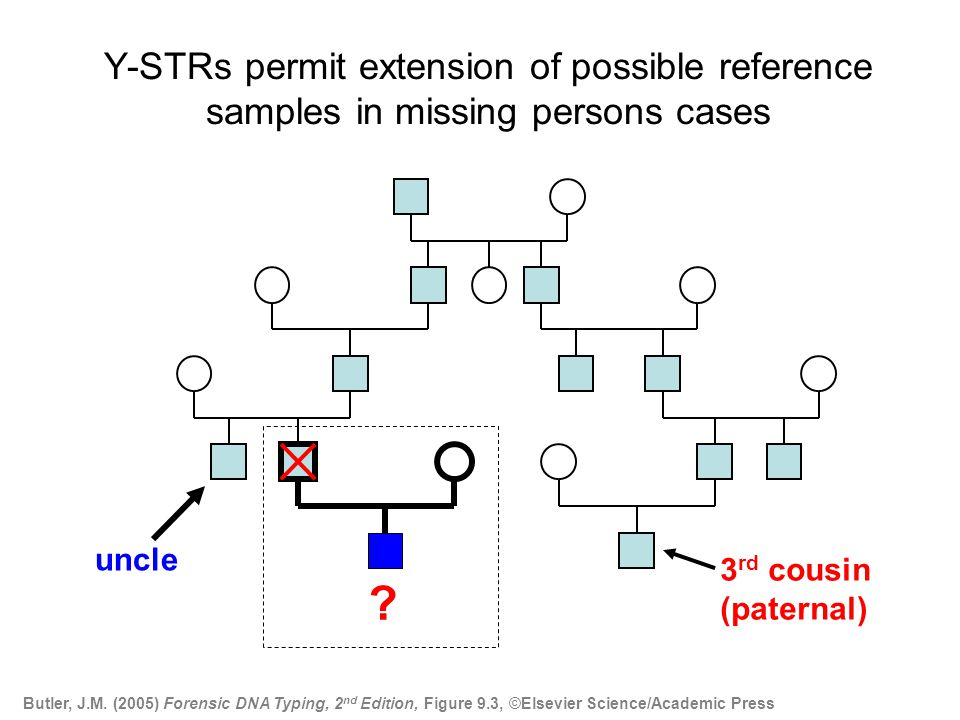Statistics with Y-STR Haplotypes Most labs will probably go with the counting method (number of times a haplotype is observed in a database) as is typically done with mtDNA results