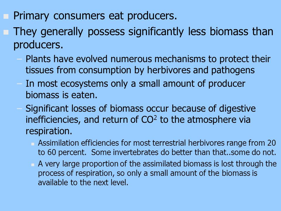 n n Primary consumers eat producers. n n They generally possess significantly less biomass than producers. – –Plants have evolved numerous mechanisms
