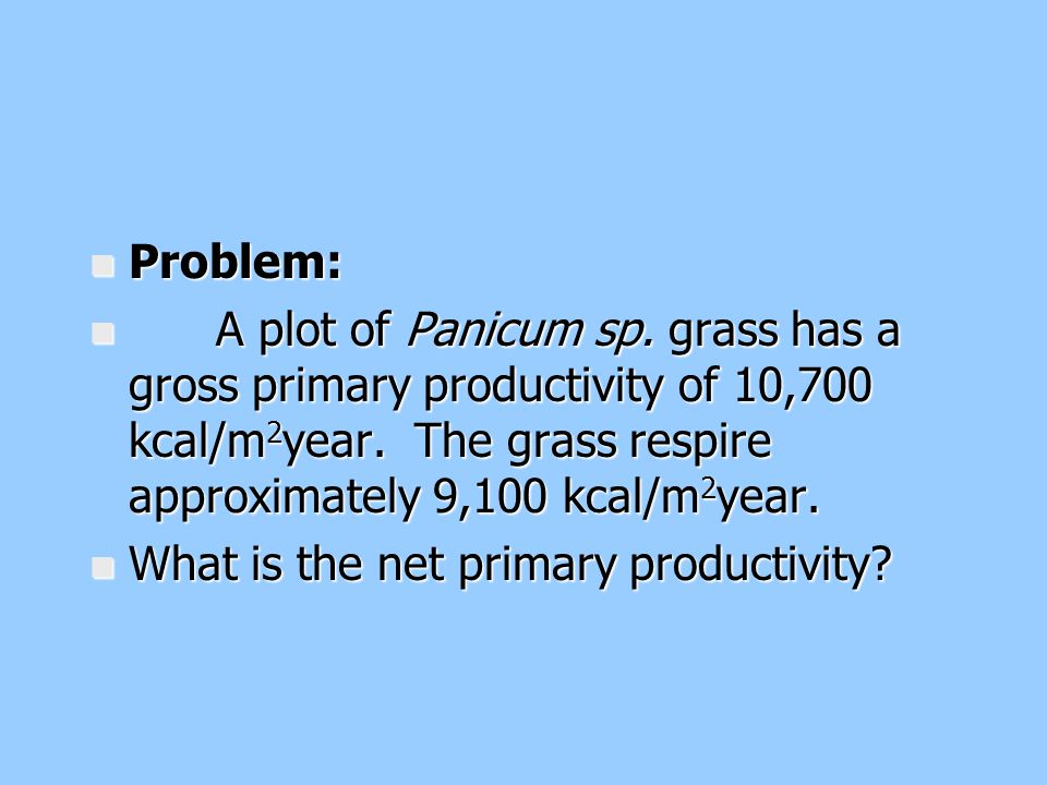 n Problem: n A plot of Panicum sp. grass has a gross primary productivity of 10,700 kcal/m 2 year. The grass respire approximately 9,100 kcal/m 2 year