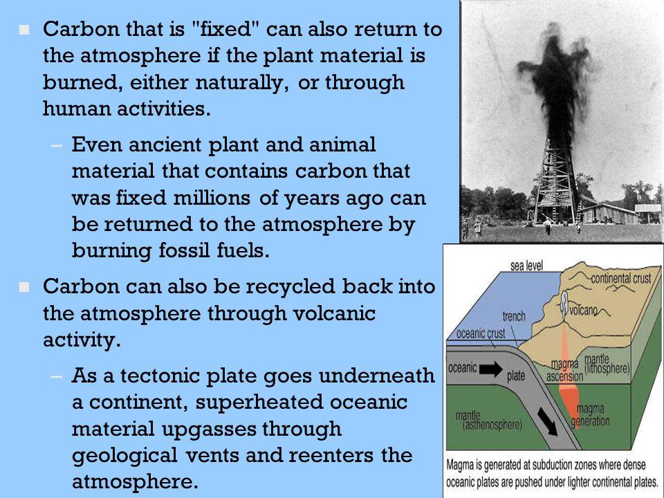 n n Carbon that is