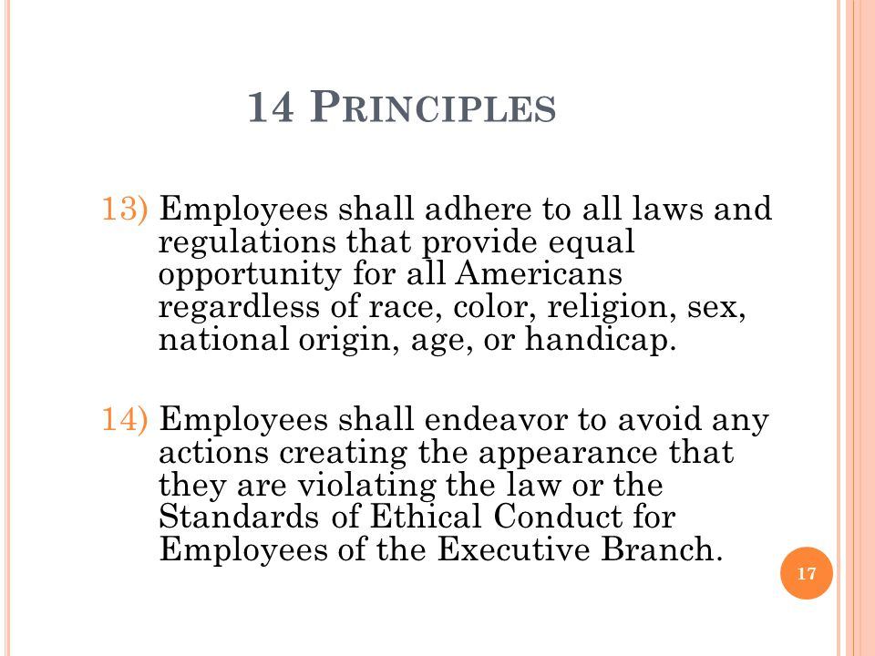 14 P RINCIPLES 13)Employees shall adhere to all laws and regulations that provide equal opportunity for all Americans regardless of race, color, relig