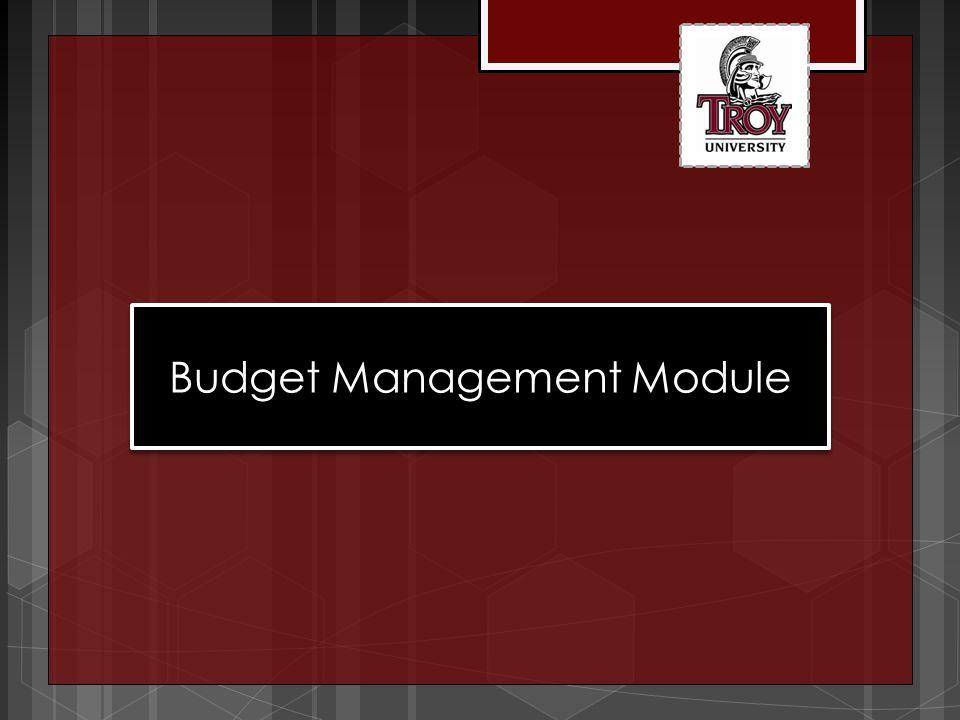 Budget Management Module