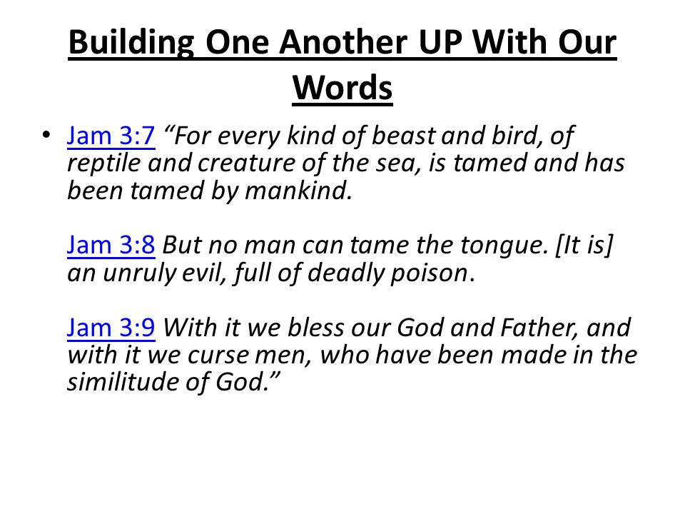 "Building One Another UP With Our Words Jam 3:7 ""For every kind of beast and bird, of reptile and creature of the sea, is tamed and has been tamed by m"