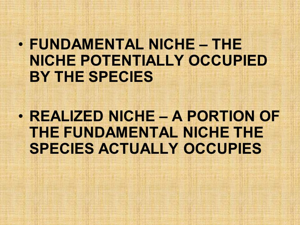 FUNDAMENTAL NICHE – THE NICHE POTENTIALLY OCCUPIED BY THE SPECIES REALIZED NICHE – A PORTION OF THE FUNDAMENTAL NICHE THE SPECIES ACTUALLY OCCUPIES