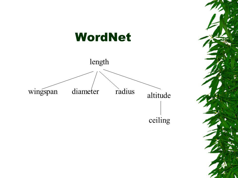 WordNet wingspan length diameterradius altitude ceiling