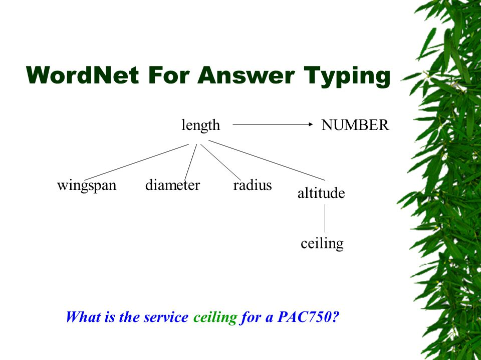 WordNet For Answer Typing wingspan length diameterradius altitude ceiling NUMBER What is the service ceiling for a PAC750