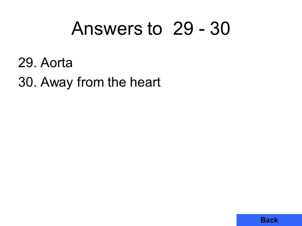 Answers to 29 - 30 29. Aorta 30. Away from the heart Back