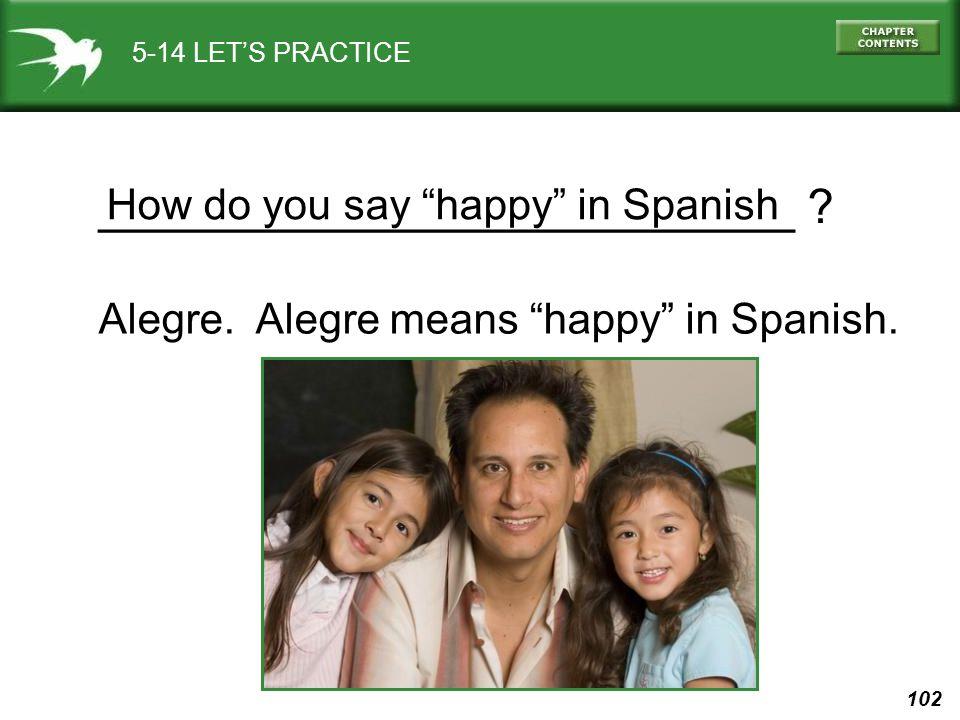 "102 5-14 LET'S PRACTICE Alegre. Alegre means ""happy"" in Spanish. __________________________ ? How do you say ""happy"" in Spanish"