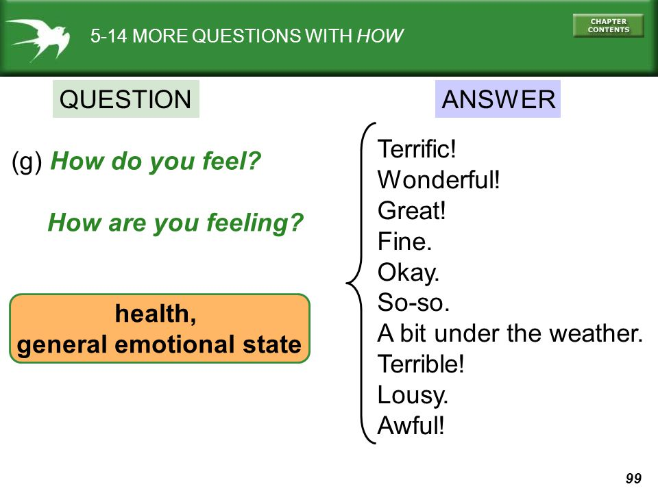 99 5-14 MORE QUESTIONS WITH HOW QUESTIONANSWER (g) How do you feel? How are you feeling? health, general emotional state Terrific! Wonderful! Great! F