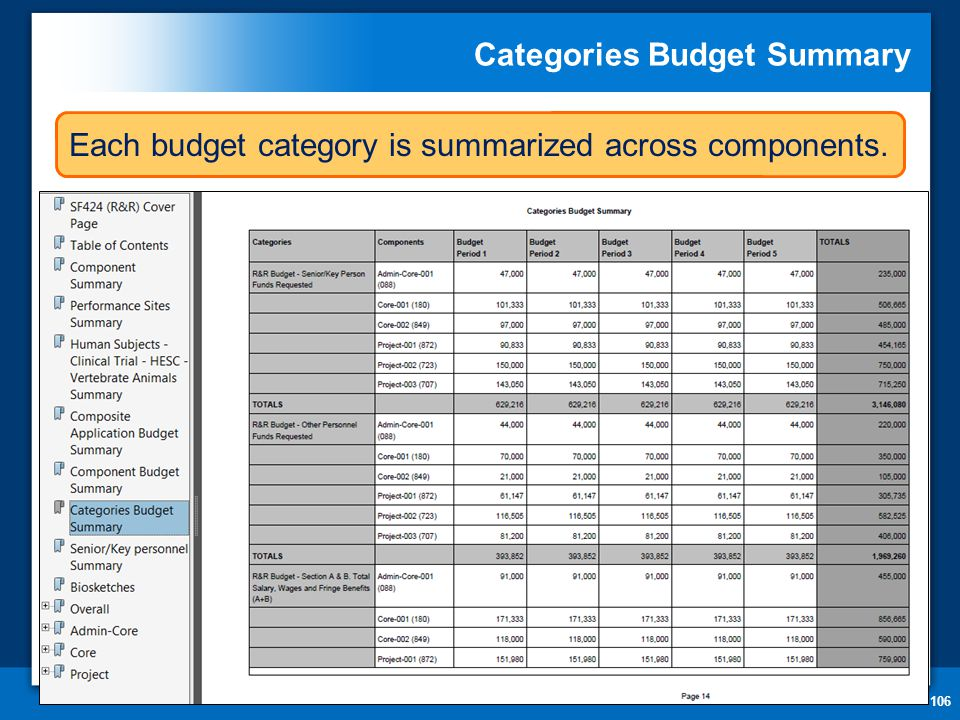 Categories Budget Summary 106 Each budget category is summarized across components.