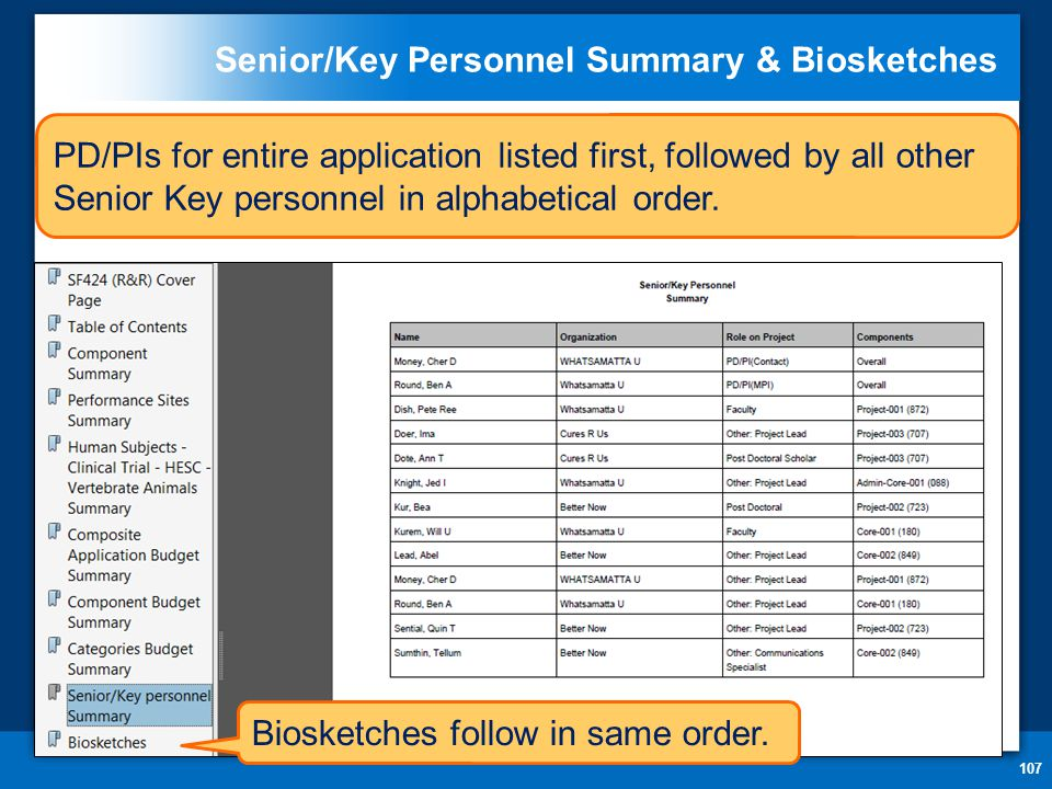 Senior/Key Personnel Summary & Biosketches 107 PD/PIs for entire application listed first, followed by all other Senior Key personnel in alphabetical order.