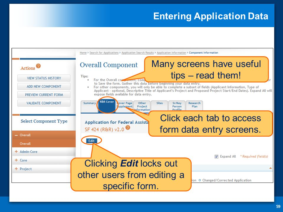 Entering Application Data 59 Click each tab to access form data entry screens.