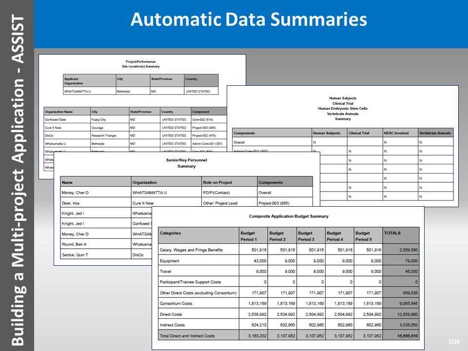 Automatic Data Summaries 104 Building a Multi-project Application - ASSIST