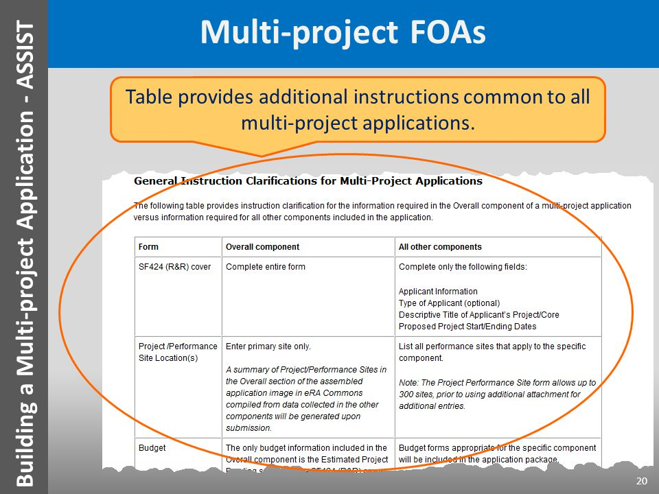 Multi-project FOAs 20 Table provides additional instructions common to all multi-project applications.