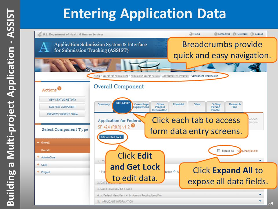 Entering Application Data Click each tab to access form data entry screens. Click Edit and Get Lock to edit data. Click Expand All to expose all data