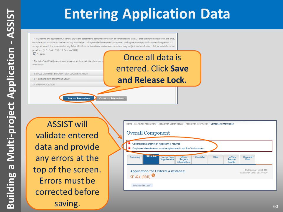 Entering Application Data ASSIST will validate entered data and provide any errors at the top of the screen.