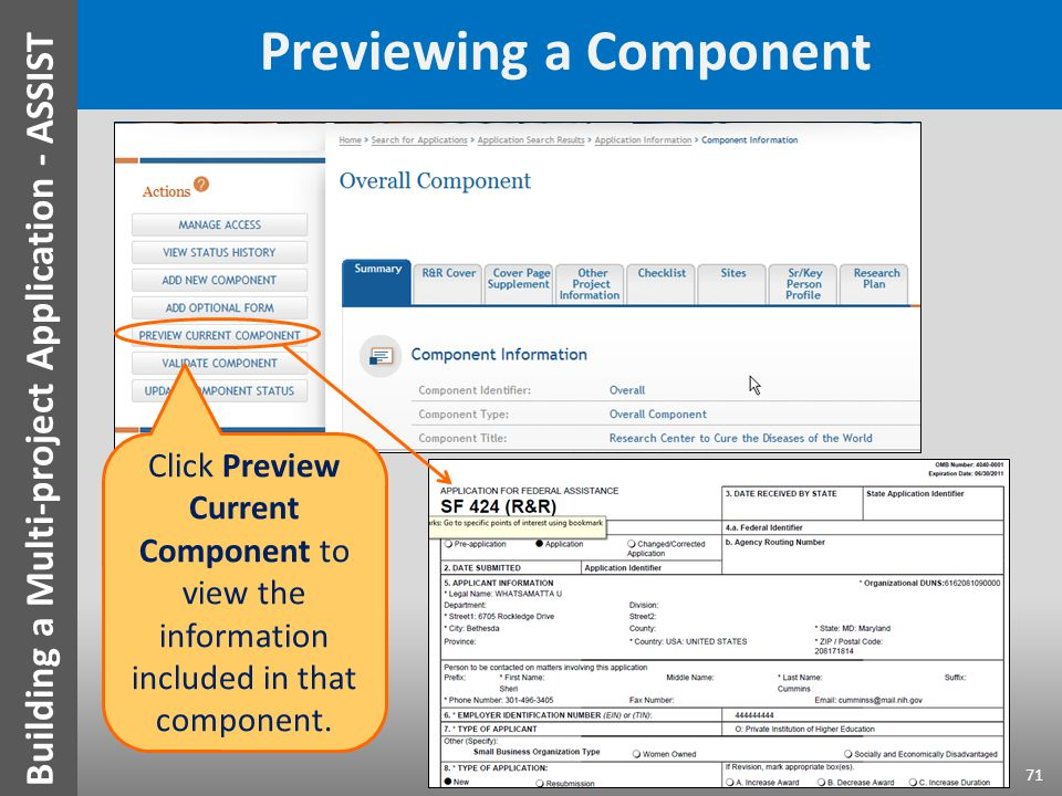 Previewing a Component Click Preview Current Component to view the information included in that component.