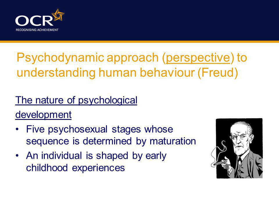 Psychodynamic approach (perspective) to understanding human behaviour (Freud) The nature of psychological development Five psychosexual stages whose s
