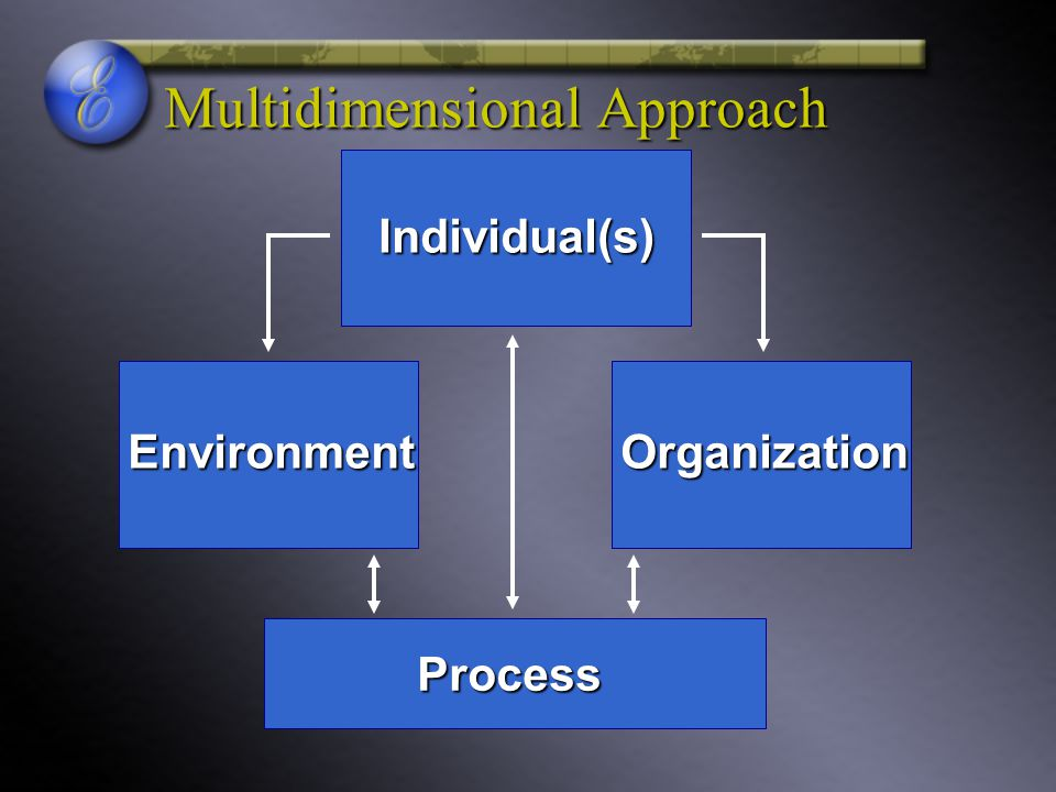 Multidimensional Approach Individual(s) OrganizationEnvironment Process