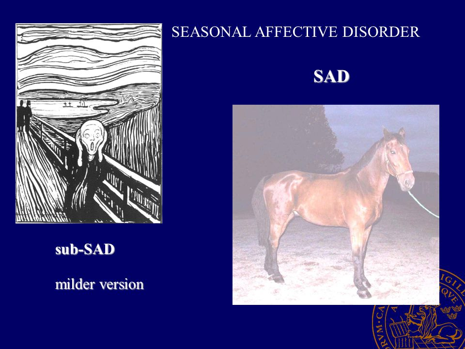 SEASONAL AFFECTIVE DISORDER SAD sub-SAD milder version