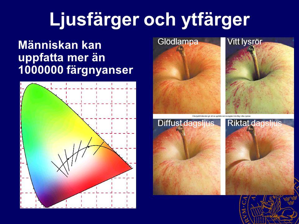 Ljusfärger och ytfärger Människan kan uppfatta mer än 1000000 färgnyanser GlödlampaVitt lysrör Diffust dagsljusRiktat dagsljus