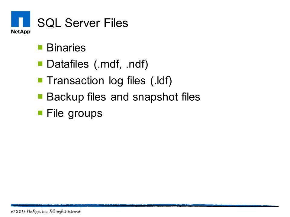 SQL Server Files  Binaries  Datafiles (.mdf,.ndf)  Transaction log files (.ldf)  Backup files and snapshot files  File groups