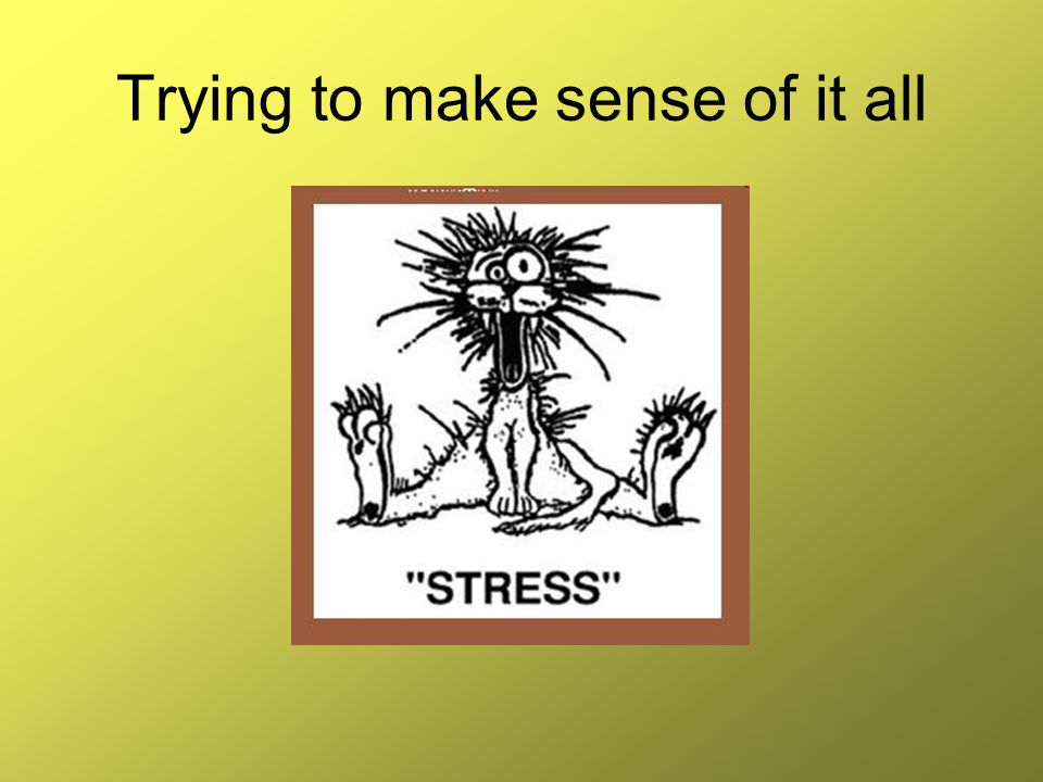 Now you can be stressed!