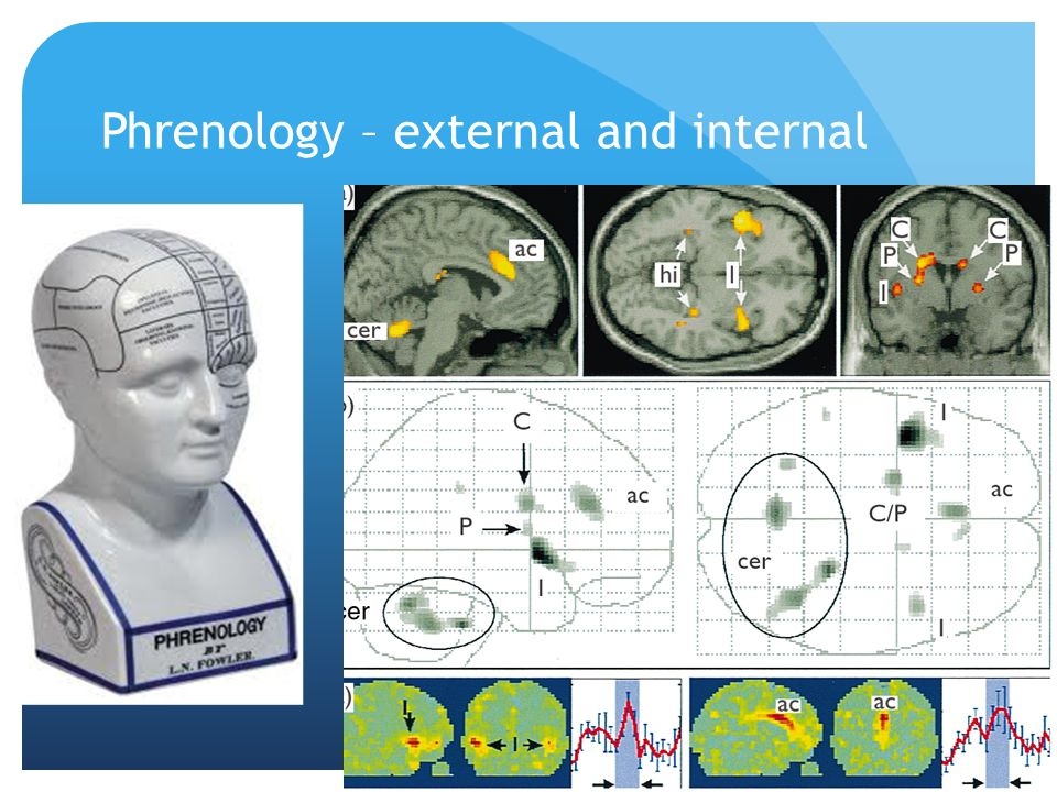 Phrenology – external and internal