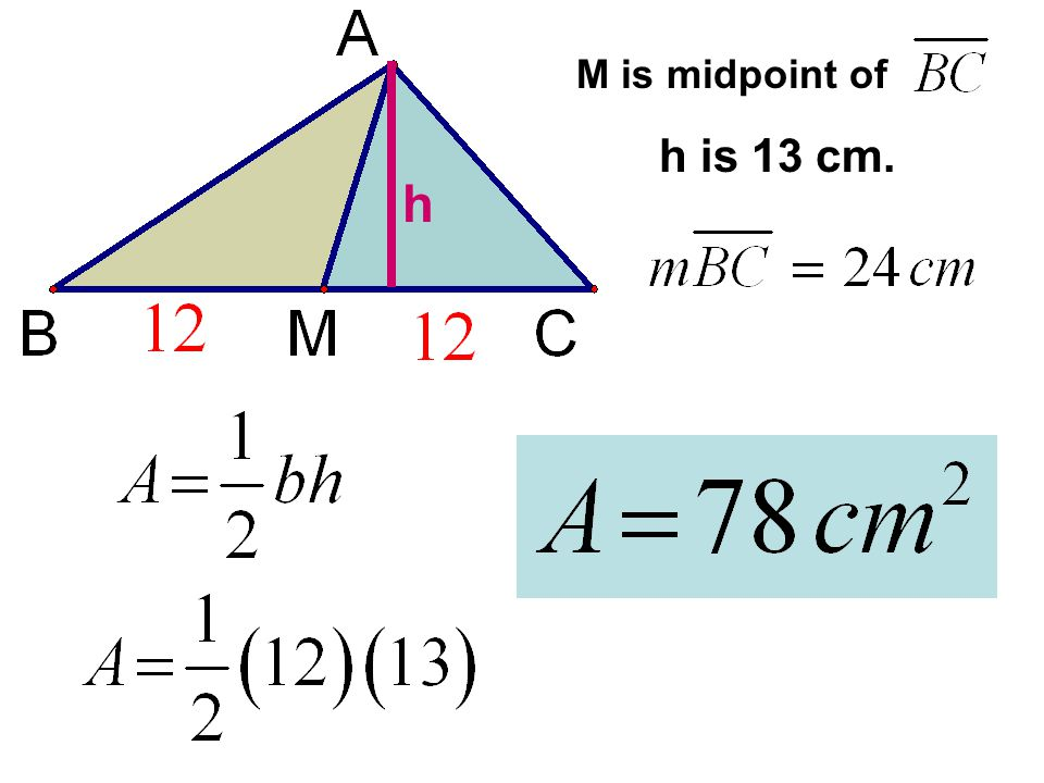 M is midpoint of h h is 13 cm.