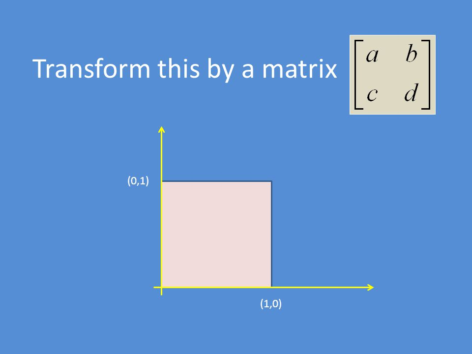 Transform this by a matrix (1,0) (0,1)