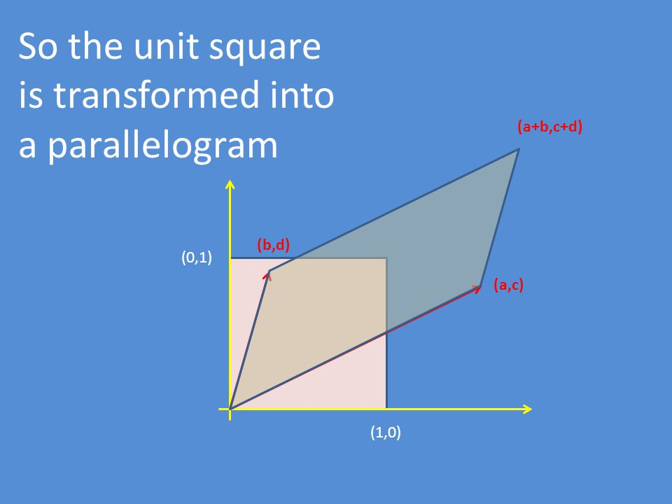(1,0) (0,1) (b,d) (a,c) So the unit square is transformed into a parallelogram (a+b,c+d)