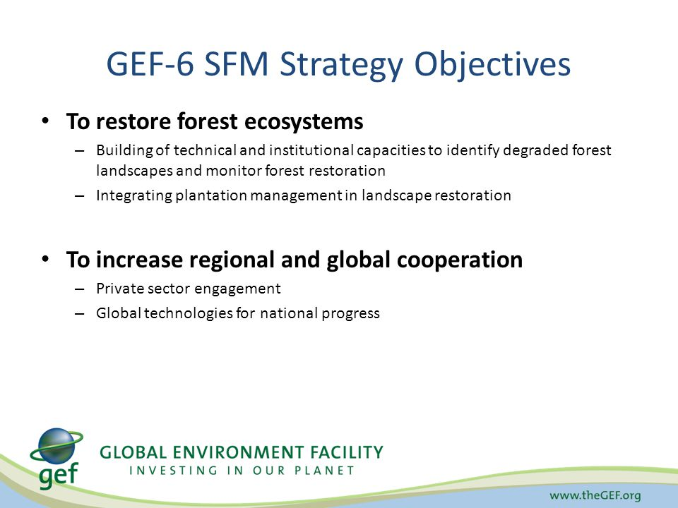 GEF-6 SFM Strategy Objectives To restore forest ecosystems – Building of technical and institutional capacities to identify degraded forest landscapes and monitor forest restoration – Integrating plantation management in landscape restoration To increase regional and global cooperation – Private sector engagement – Global technologies for national progress