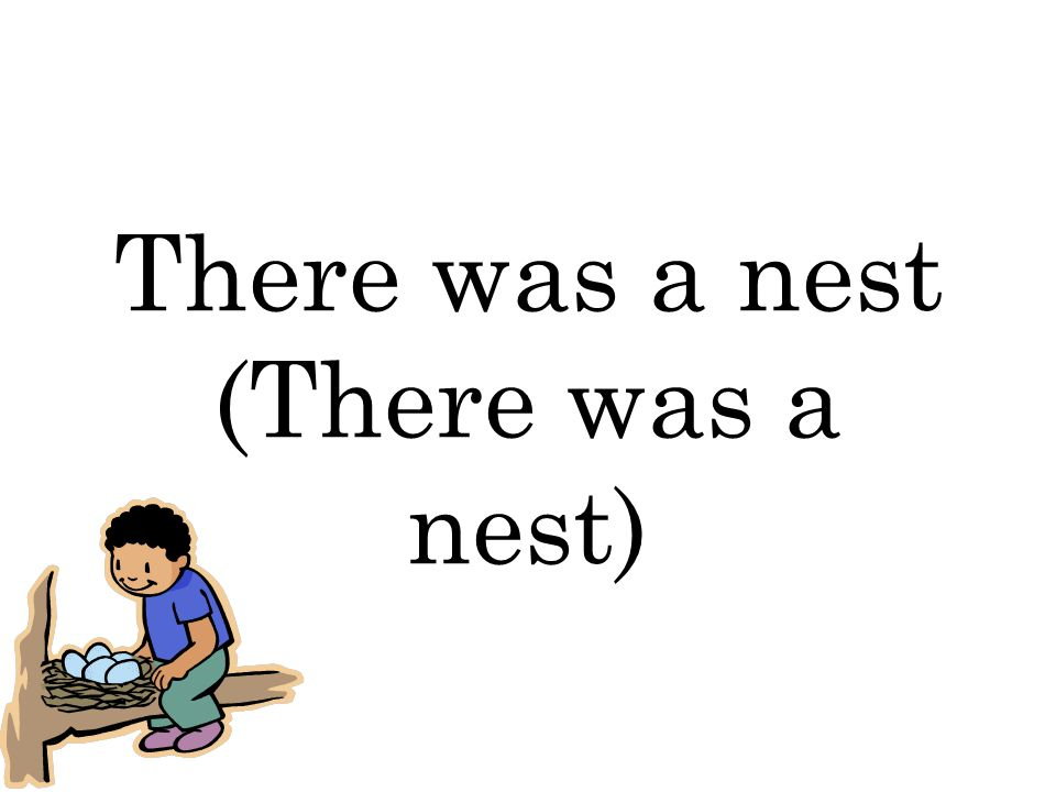 There was a nest (There was a nest)