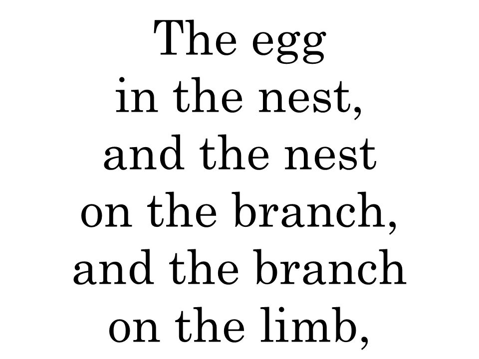 The egg in the nest, and the nest on the branch, and the branch on the limb,
