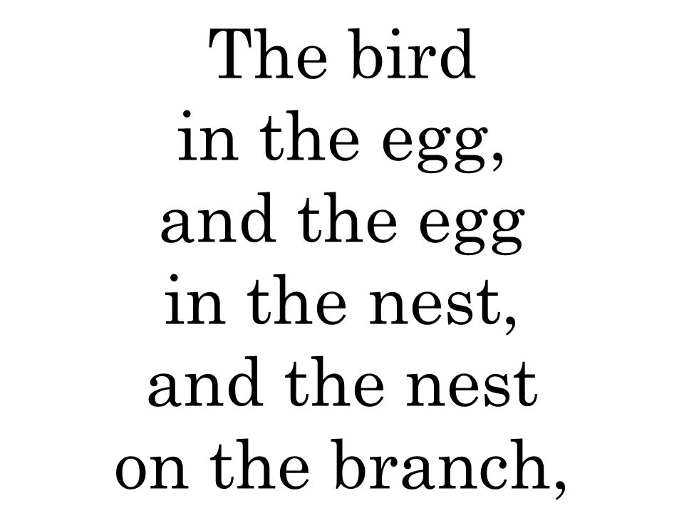 The bird in the egg, and the egg in the nest, and the nest on the branch,