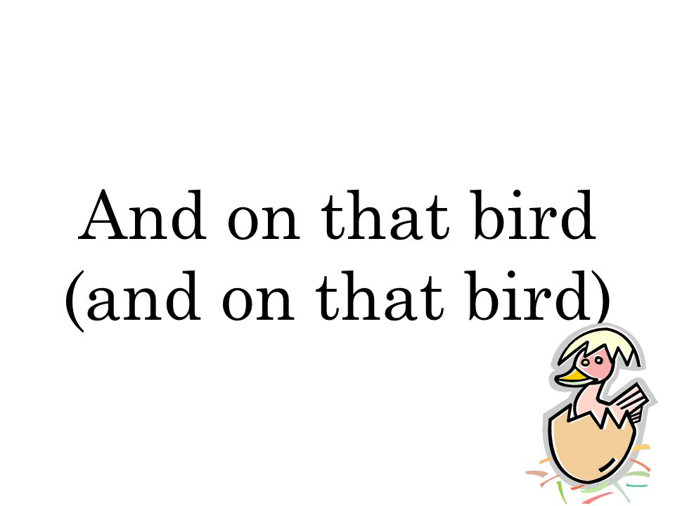 And on that bird (and on that bird)