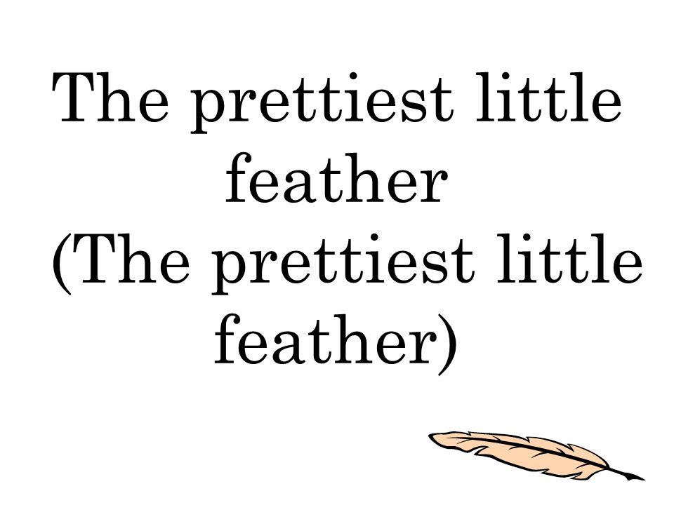 The prettiest little feather (The prettiest little feather)