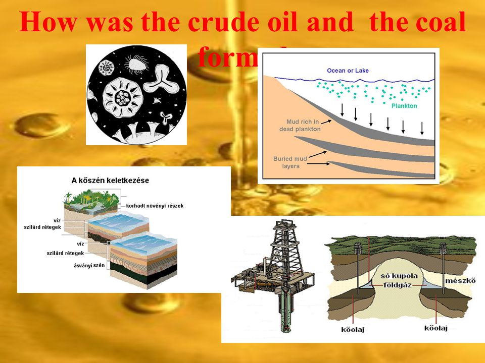 How was the crude oil and the coal formed