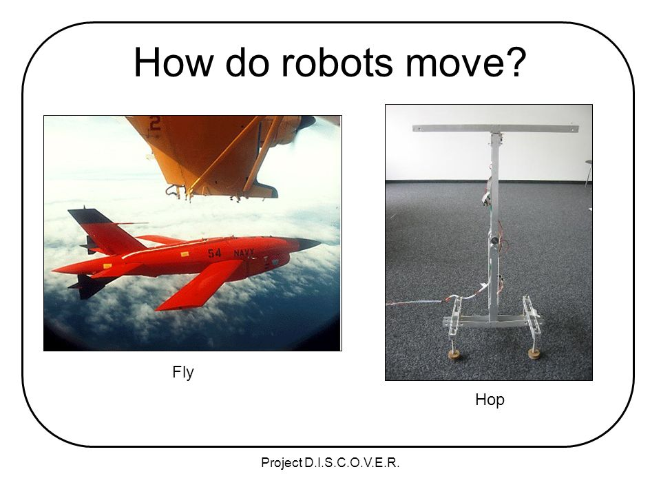 Project D.I.S.C.O.V.E.R. How do robots move Fly Hop