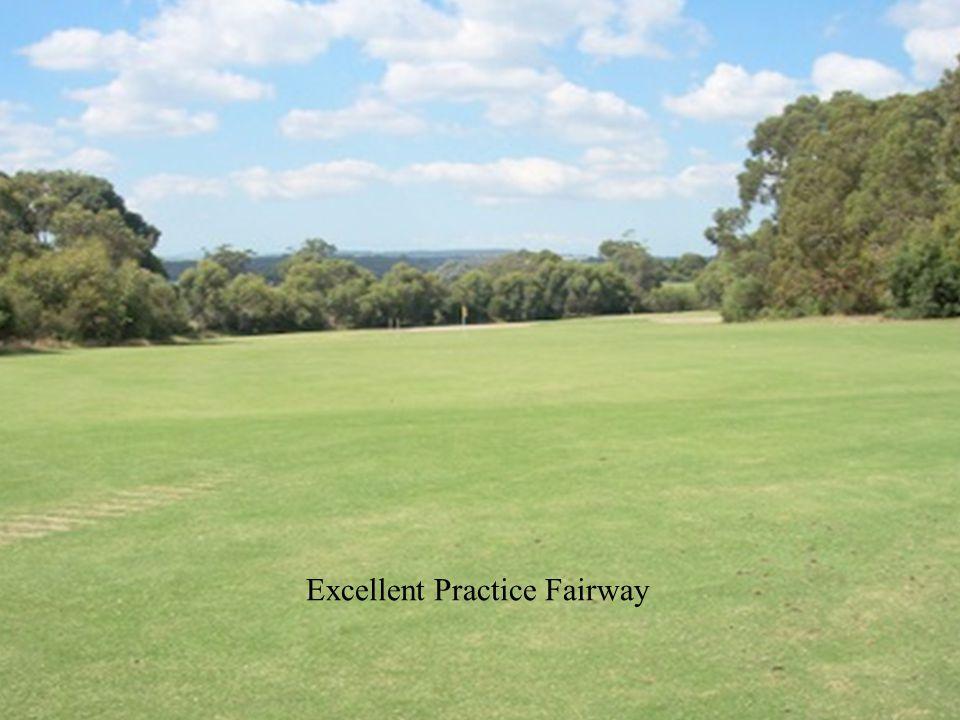 Excellent Practice Fairway