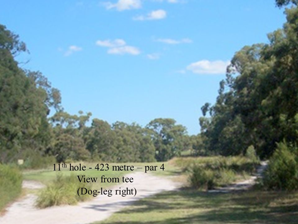 11 th hole - 423 metre – par 4 View from tee (Dog-leg right)