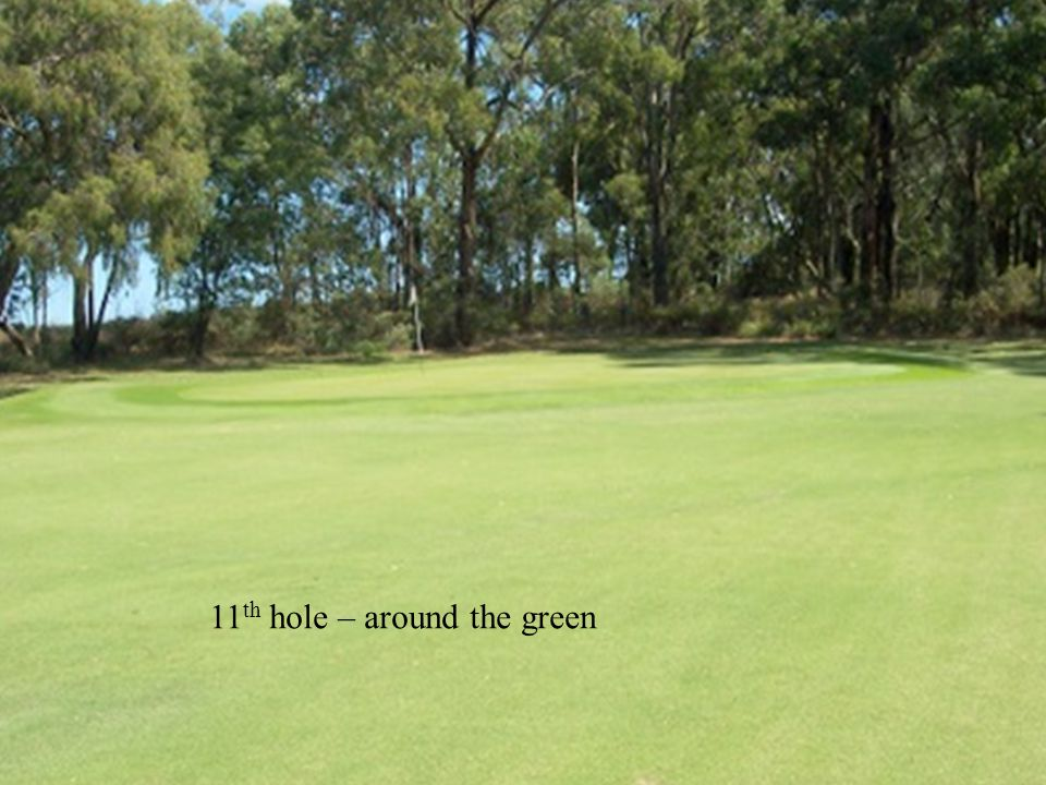11 th hole – around the green