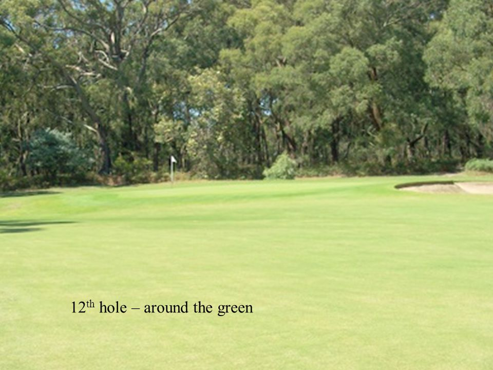 12 th hole – around the green