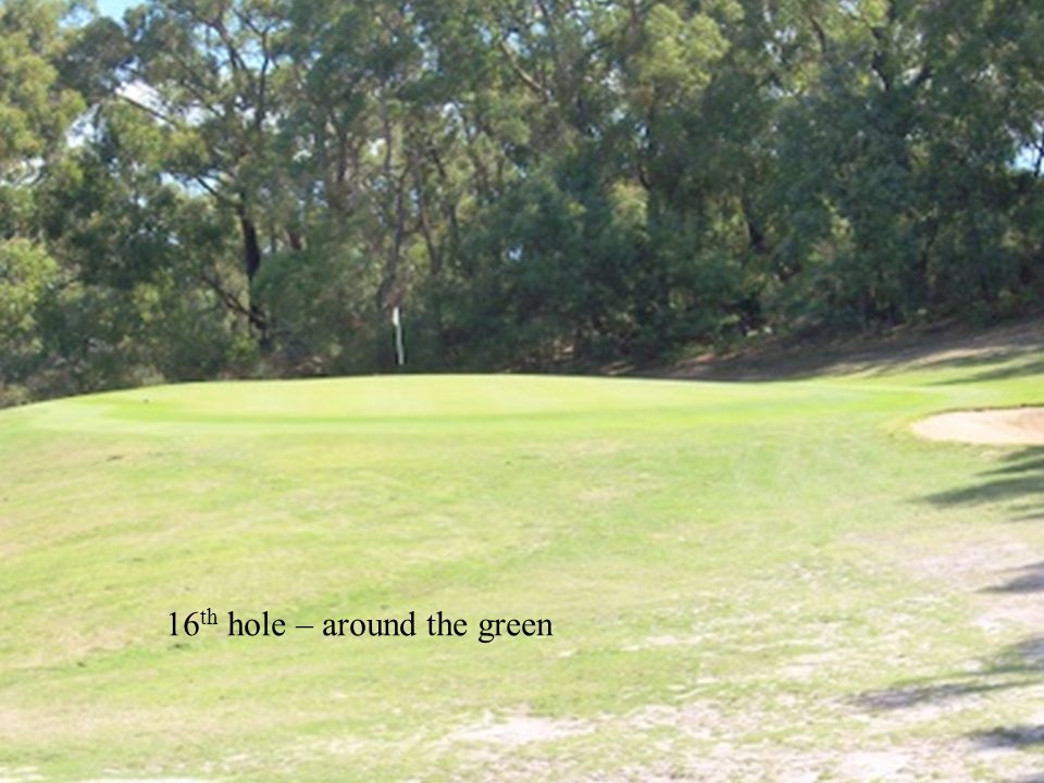 16 th hole – around the green