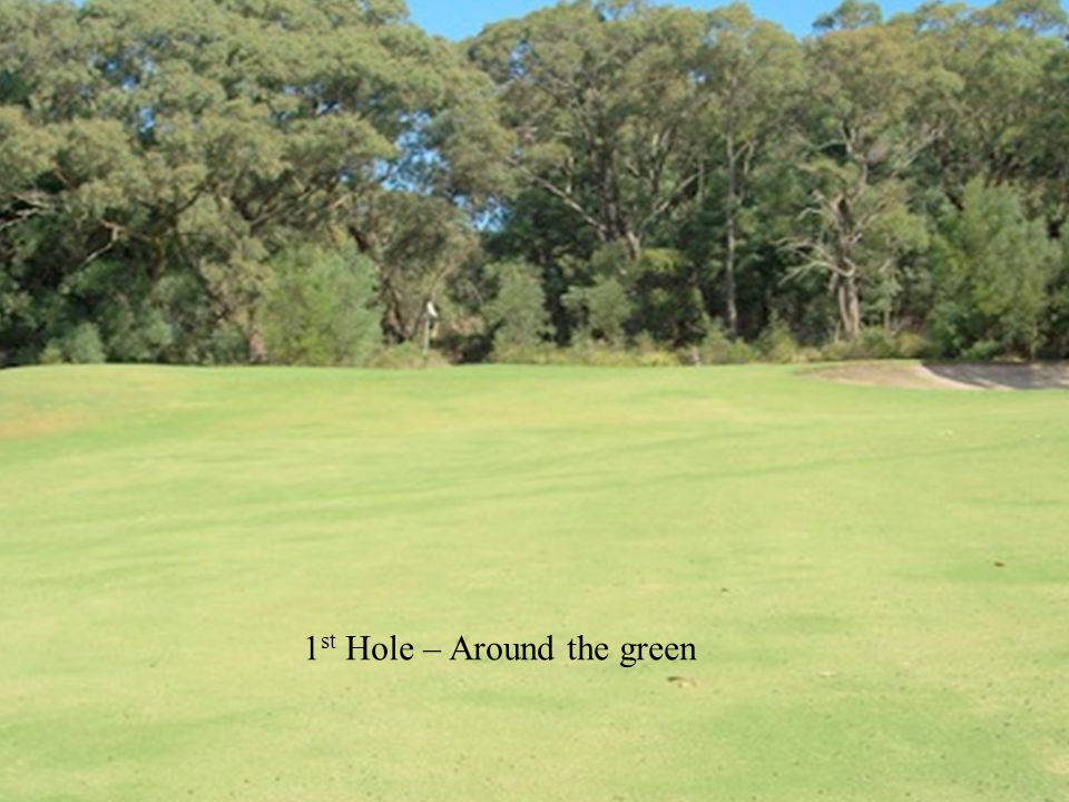 1 st Hole – Around the green